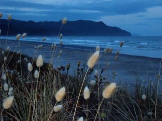 72 Waihi beach in evening
