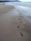 96 a walk along the beach