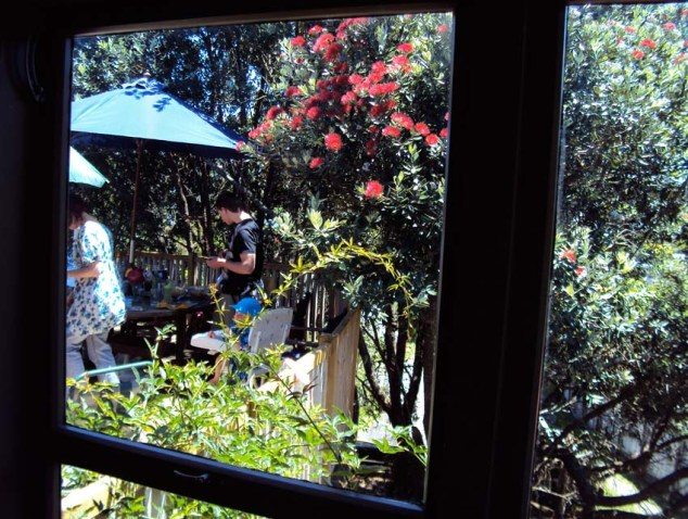 961-porch-and-pohutukawa